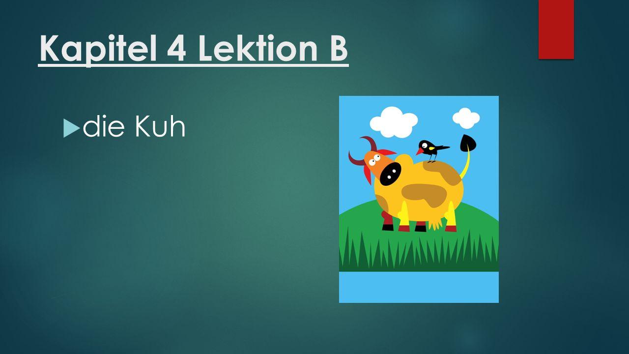Kapitel 4 Lektion B  die Kuh