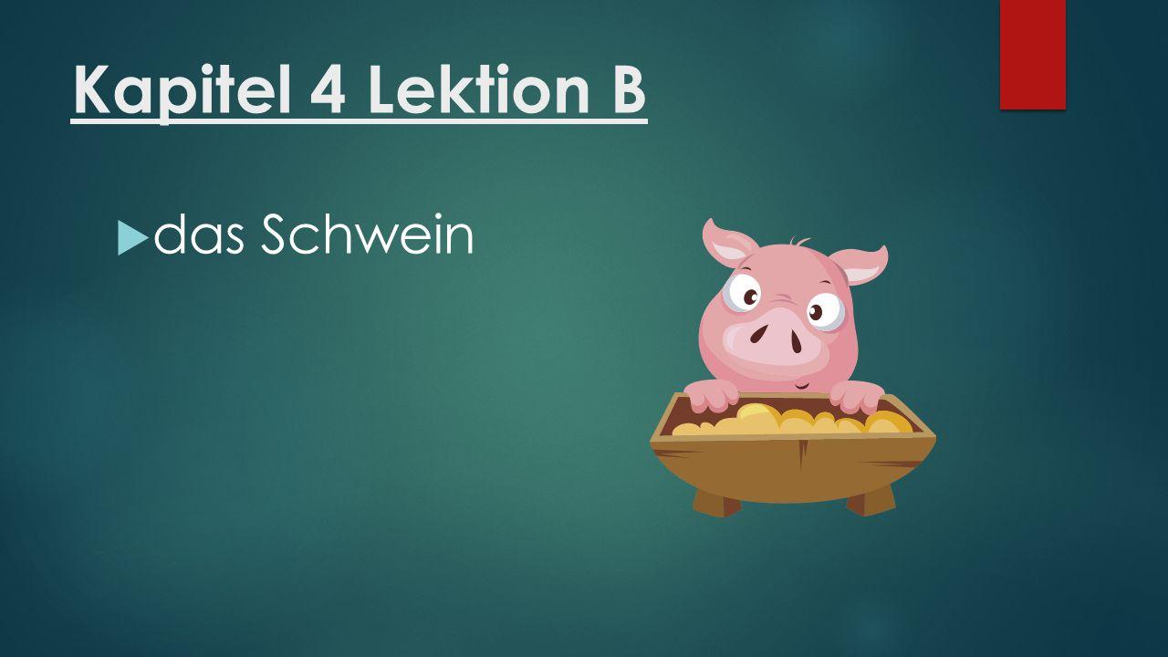 Kapitel 4 Lektion B  das Schwein