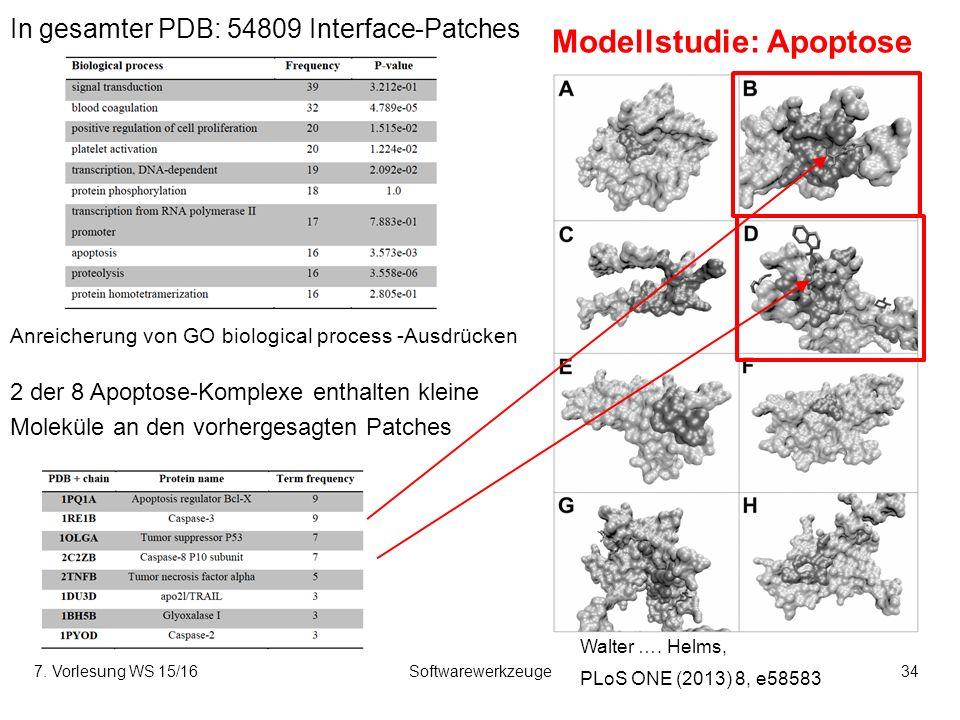7. Vorlesung WS 15/16Softwarewerkzeuge34 Modellstudie: Apoptose Anreicherung von GO biological process -Ausdrücken 2 der 8 Apoptose-Komplexe enthalten