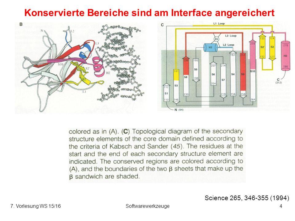 7. Vorlesung WS 15/16Softwarewerkzeuge25 Energetik der Assoziation hydrophiler Proteine