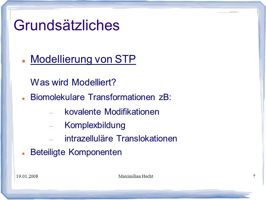 19.01.2008Maximilian Hecht7 Modellierung von STP Was wird Modelliert.