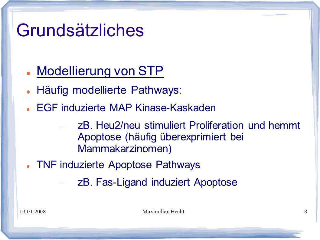 19.01.2008Maximilian Hecht8 Modellierung von STP Häufig modellierte Pathways: EGF induzierte MAP Kinase-Kaskaden  zB.