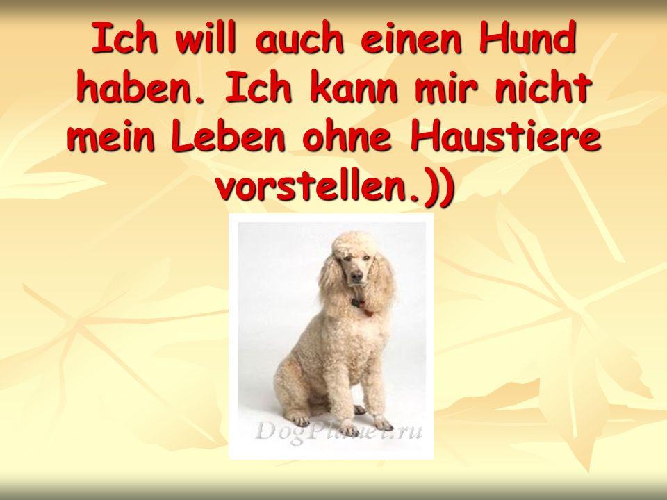 Ich will auch einen Hund haben. Ich kann mir nicht mein Leben ohne Haustiere vorstellen.))
