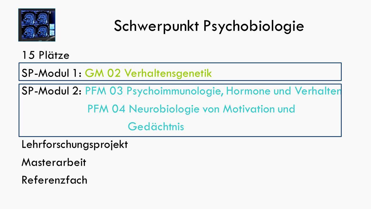 Schwerpunkt Psychobiologie 15 Plätze SP-Modul 1: GM 02 Verhaltensgenetik SP-Modul 2: PFM 03 Psychoimmunologie, Hormone und Verhalten PFM 04 Neurobiologie von Motivation und Gedächtnis Lehrforschungsprojekt Masterarbeit Referenzfach