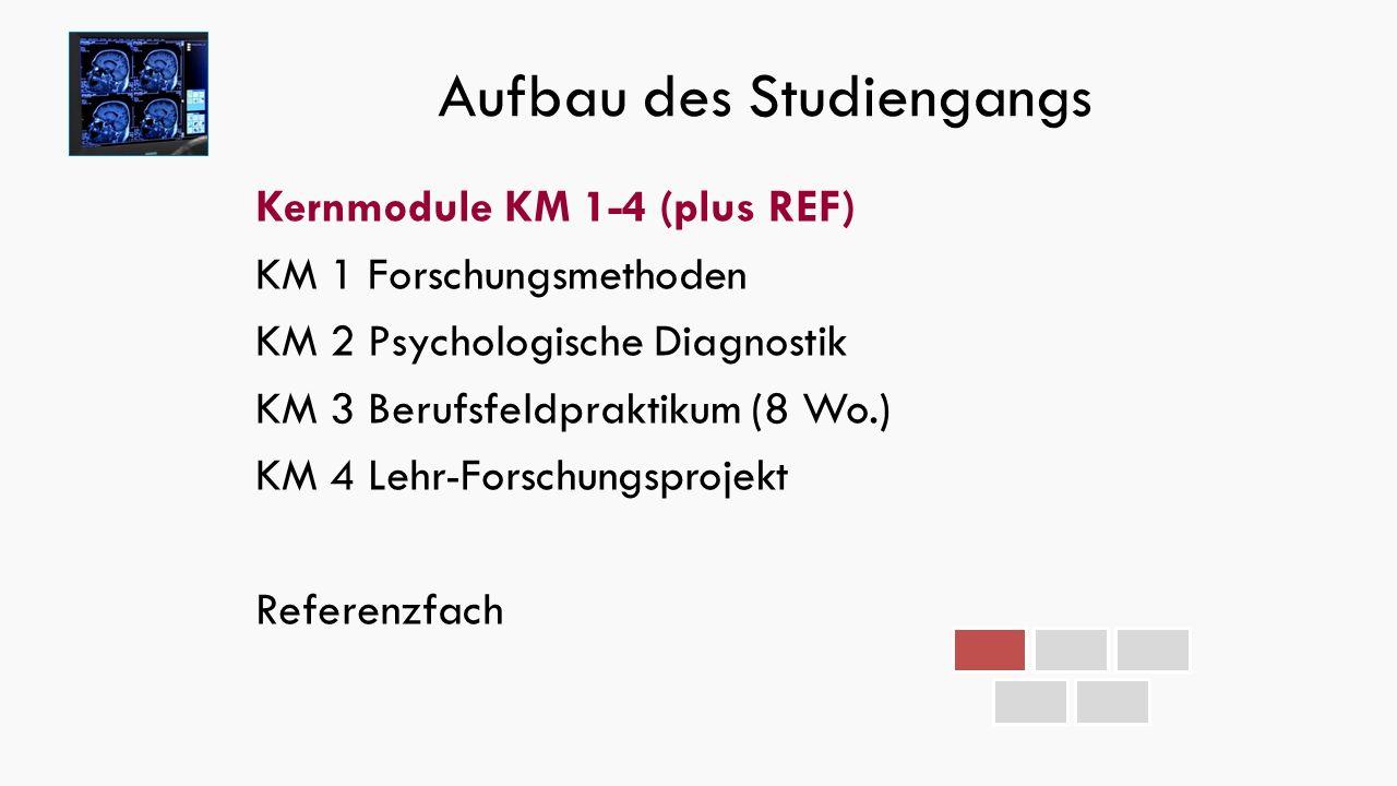 Aufbau des Studiengangs Kernmodule KM 1-4 (plus REF) KM 1 Forschungsmethoden KM 2 Psychologische Diagnostik KM 3 Berufsfeldpraktikum (8 Wo.) KM 4 Lehr-Forschungsprojekt Referenzfach
