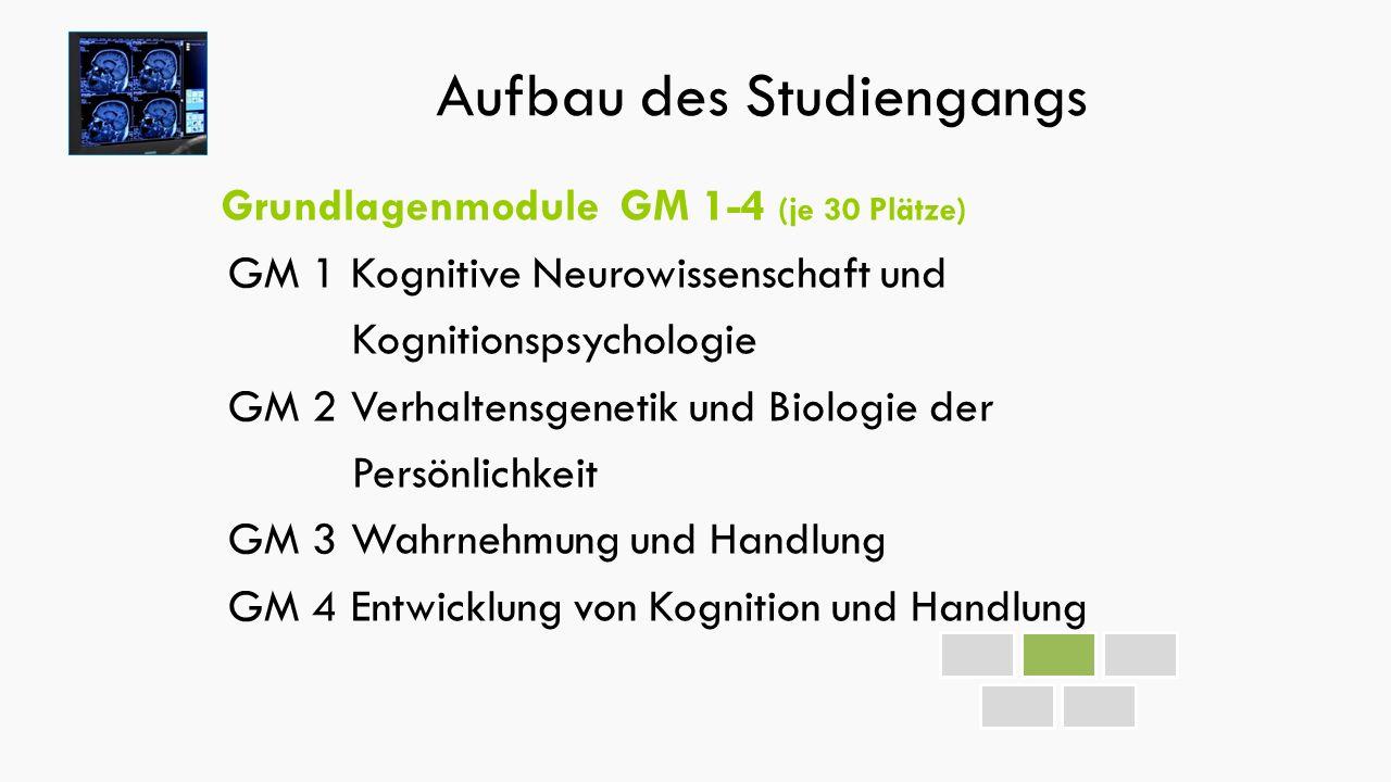 Aufbau des Studiengangs Grundlagenmodule GM 1-4 (je 30 Plätze) GM 1 Kognitive Neurowissenschaft und Kognitionspsychologie GM 2 Verhaltensgenetik und Biologie der Persönlichkeit GM 3 Wahrnehmung und Handlung GM 4 Entwicklung von Kognition und Handlung