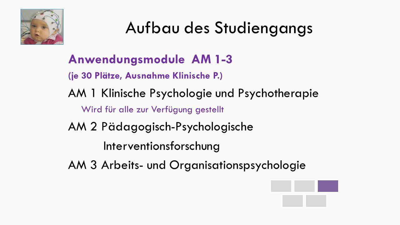 Aufbau des Studiengangs Anwendungsmodule AM 1-3 (je 30 Plätze, Ausnahme Klinische P.) AM 1 Klinische Psychologie und Psychotherapie Wird für alle zur Verfügung gestellt AM 2 Pädagogisch-Psychologische Interventionsforschung AM 3 Arbeits- und Organisationspsychologie