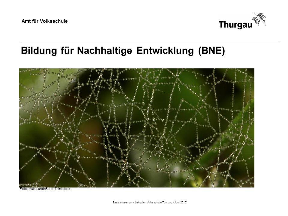 Amt für Volksschule Bildung für Nachhaltige Entwicklung (BNE) Basiswissen zum Lehrplan Volksschule Thurgau (Juni 2016) Foto: Mats Lund/iStock/Thinkstock