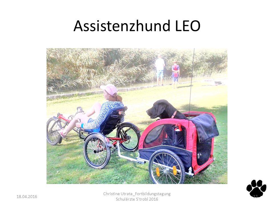 Assistenzhund LEO 18.04.2016 Christine Utrata_Fortbildungstagung Schulärzte S'trobl 2016 12