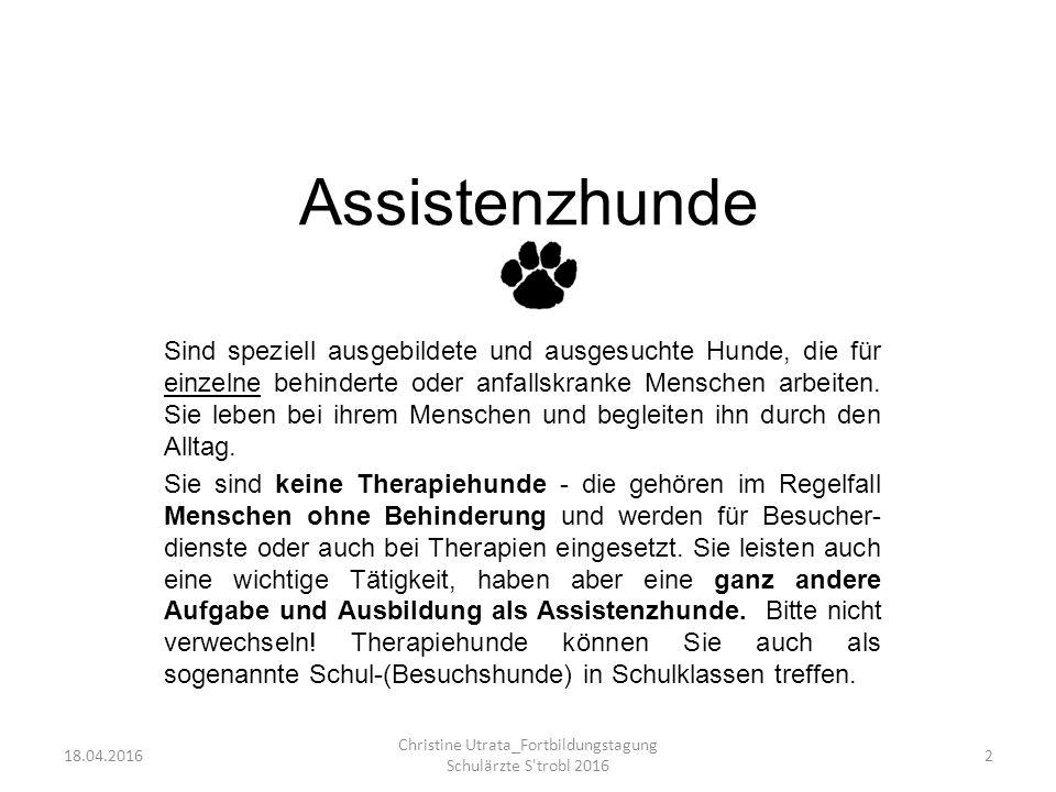 Assistenzhunde Sind speziell ausgebildete und ausgesuchte Hunde, die für einzelne behinderte oder anfallskranke Menschen arbeiten.