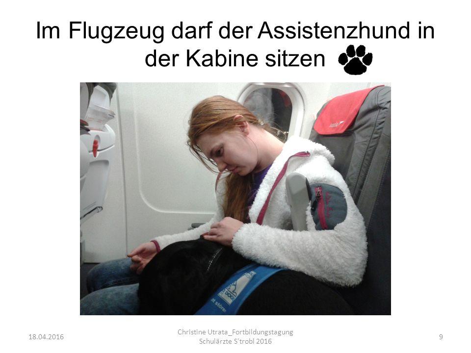 Im Flugzeug darf der Assistenzhund in der Kabine sitzen 18.04.2016 Christine Utrata_Fortbildungstagung Schulärzte S trobl 2016 9