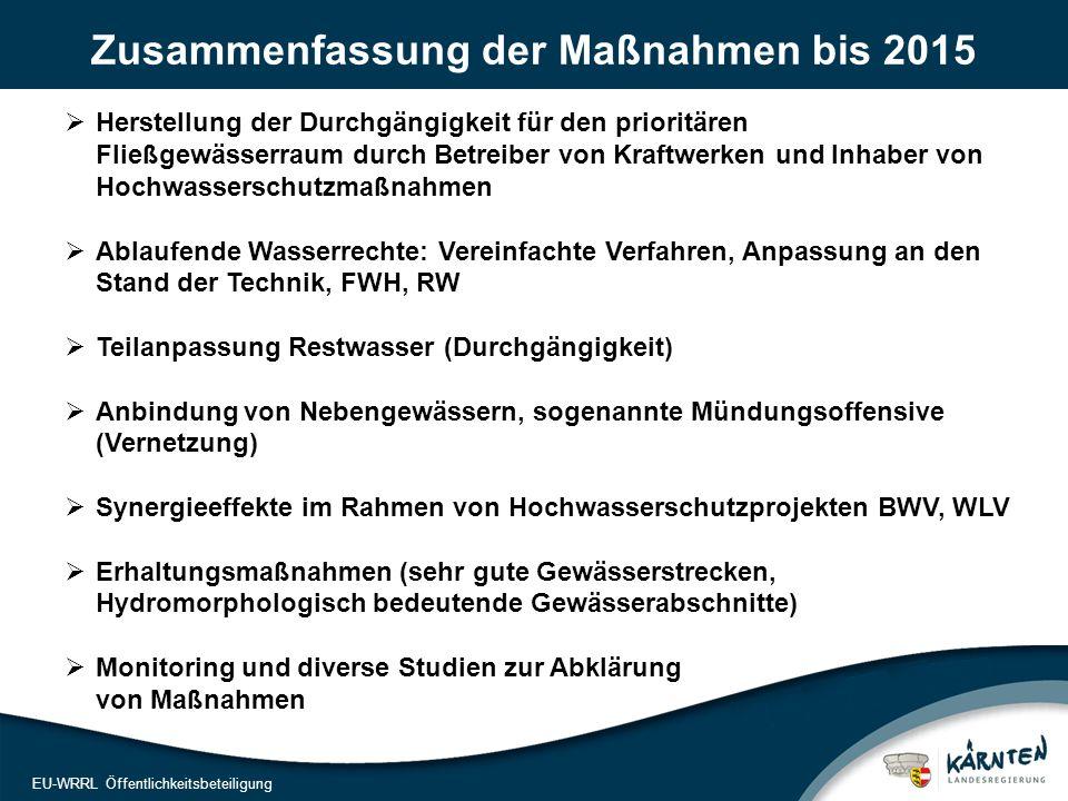 18 EU-WRRL Öffentlichkeitsbeteiligung Zusammenfassung der Maßnahmen bis 2015  Herstellung der Durchgängigkeit für den prioritären Fließgewässerraum durch Betreiber von Kraftwerken und Inhaber von Hochwasserschutzmaßnahmen  Ablaufende Wasserrechte: Vereinfachte Verfahren, Anpassung an den Stand der Technik, FWH, RW  Teilanpassung Restwasser (Durchgängigkeit)  Anbindung von Nebengewässern, sogenannte Mündungsoffensive (Vernetzung)  Synergieeffekte im Rahmen von Hochwasserschutzprojekten BWV, WLV  Erhaltungsmaßnahmen (sehr gute Gewässerstrecken, Hydromorphologisch bedeutende Gewässerabschnitte)  Monitoring und diverse Studien zur Abklärung von Maßnahmen