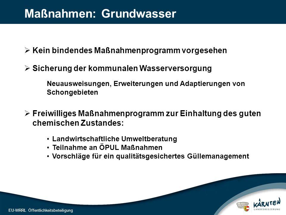 17 EU-WRRL Öffentlichkeitsbeteiligung Maßnahmen bis 2015: WLV – die Wildbach Bezirksstädte Rückbau Grundschwelle Fischaufstiegshilfe Anrampung best.