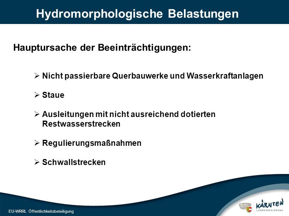 9 EU-WRRL Öffentlichkeitsbeteiligung Hydromorphologische Belastungen  Nicht passierbare Querbauwerke und Wasserkraftanlagen  Staue  Ausleitungen mit nicht ausreichend dotierten Restwasserstrecken  Regulierungsmaßnahmen  Schwallstrecken Hauptursache der Beeinträchtigungen: