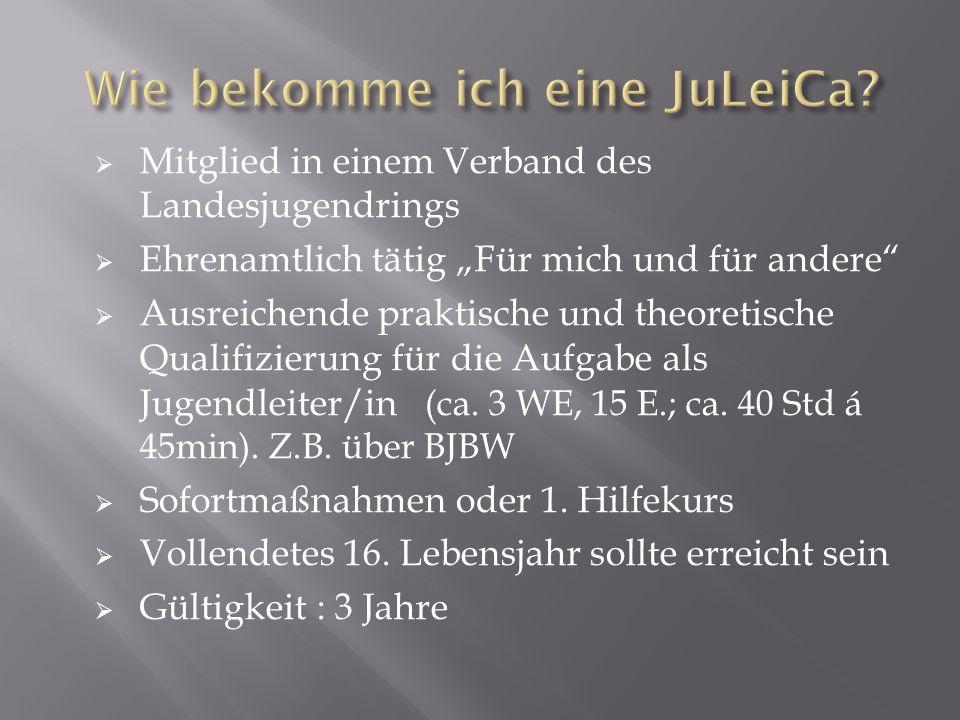 Infos und Anträge unter :  www.JuLeiCa.de www.JuLeiCa.de  www.dbjr.de (Deutsche Bundesjugendring) www.dbjr.de  www.bjbw.de/ueberfach.php www.bjbw.de/ueberfach.php Lehrgänge / Termine:  www.bjbw.de www.bjbw.de  Seminarplaner des BVBW  www.bvbw-online.de bzw.