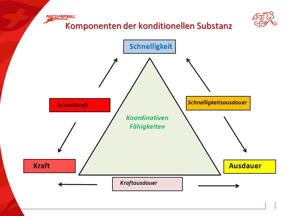 Komponenten der konditionellen Substanz Schnelligkeit Kraft Ausdauer Schnellkraft Schnelligkeitsausdauer Kraftausdauer Koordinativen Fähigkeiten