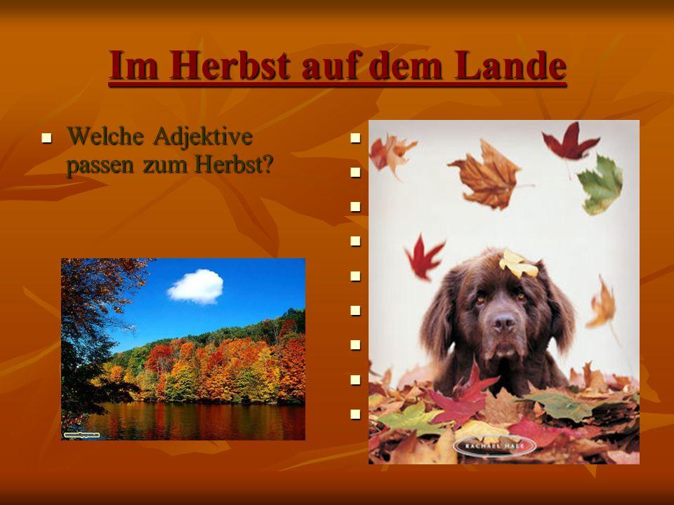 Im Herbst auf dem Lande Welche Adjektive passen zum Herbst.