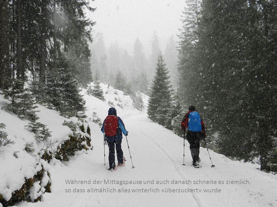 Während der Mittagspause und auch danach schneite es ziemlich, so dass allmählich alles winterlich «überzuckert» wurde