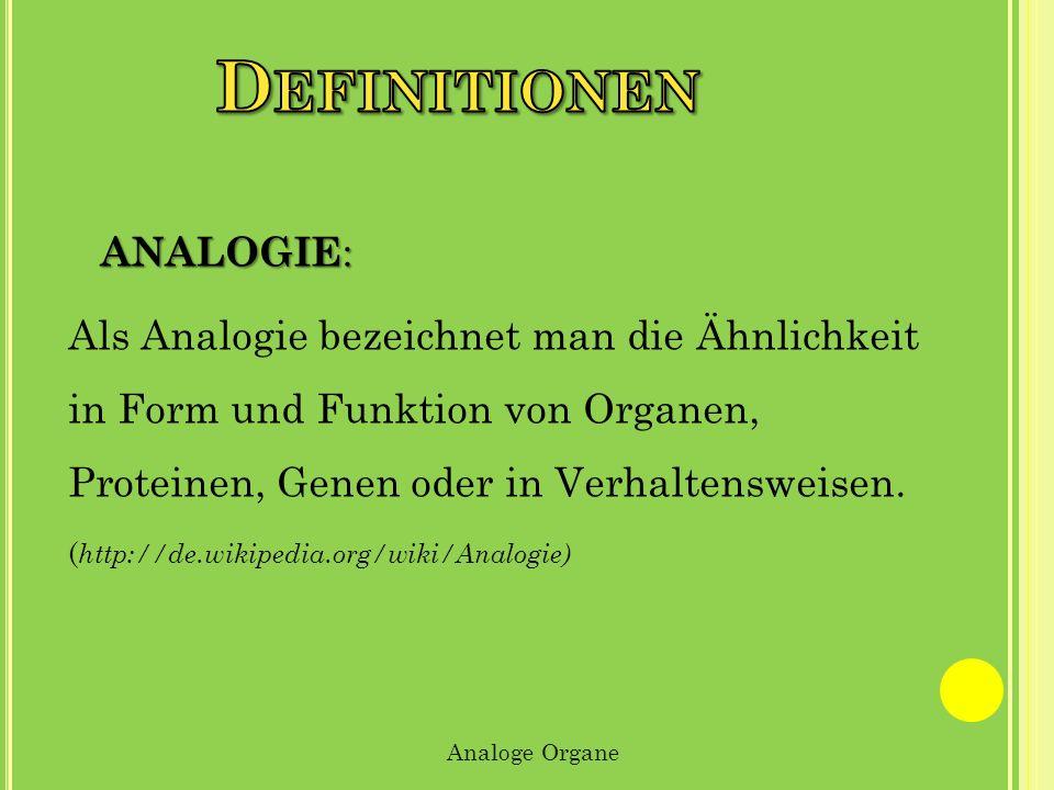 ANALOGIE : Als Analogie bezeichnet man die Ähnlichkeit in Form und Funktion von Organen, Proteinen, Genen oder in Verhaltensweisen. ( http://de.wikipe