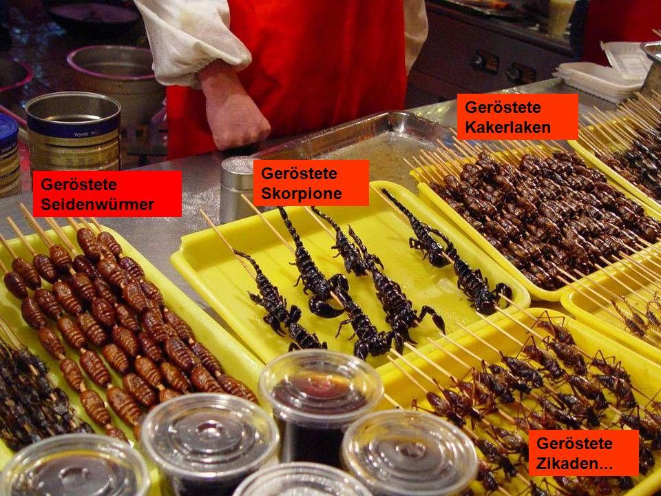Geröstete Skorpione Geröstete Seidenwürmer Geröstete Zikaden... Geröstete Kakerlaken