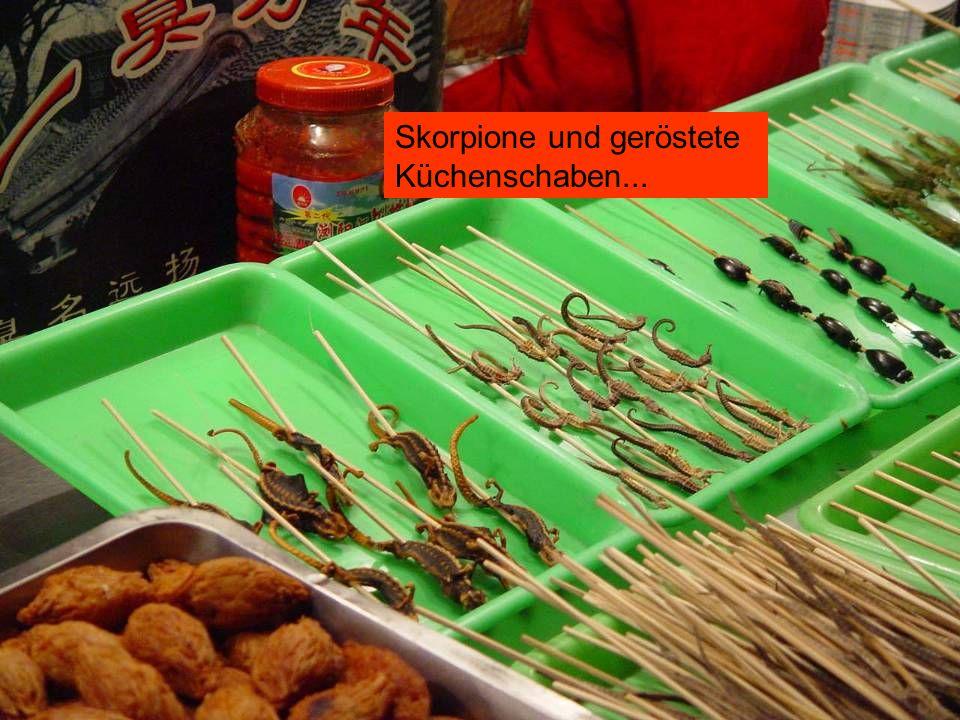 Skorpione und geröstete Küchenschaben...