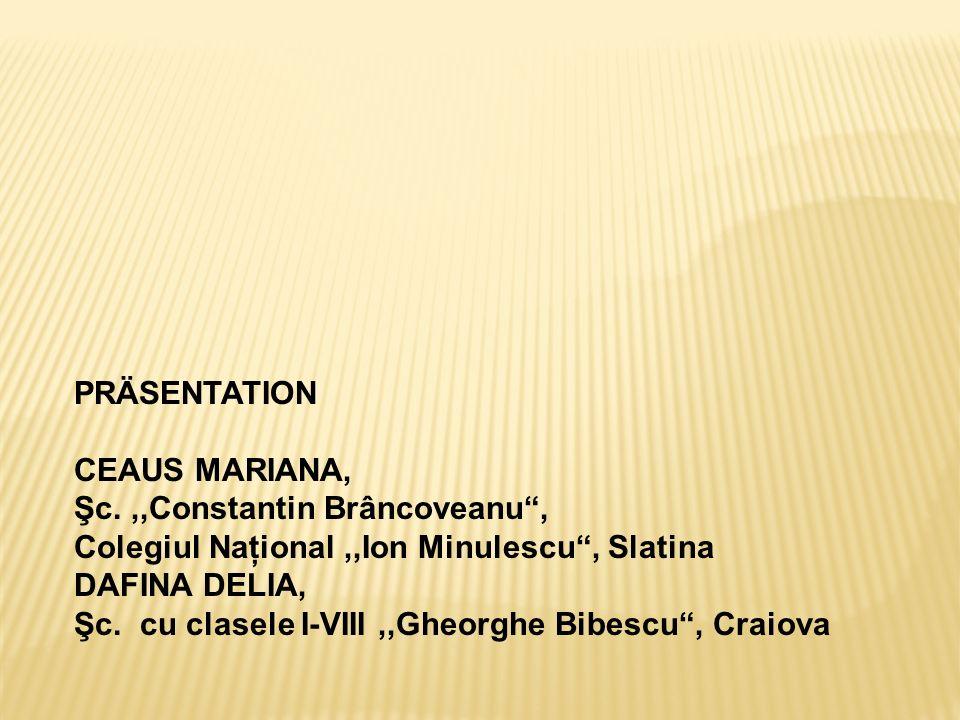 """PRÄSENTATION CEAUS MARIANA, Şc.,,Constantin Brâncoveanu"""", Colegiul Naţional,,Ion Minulescu"""", Slatina DAFINA DELIA, Şc. cu clasele I-VIII,,Gheorghe Bib"""