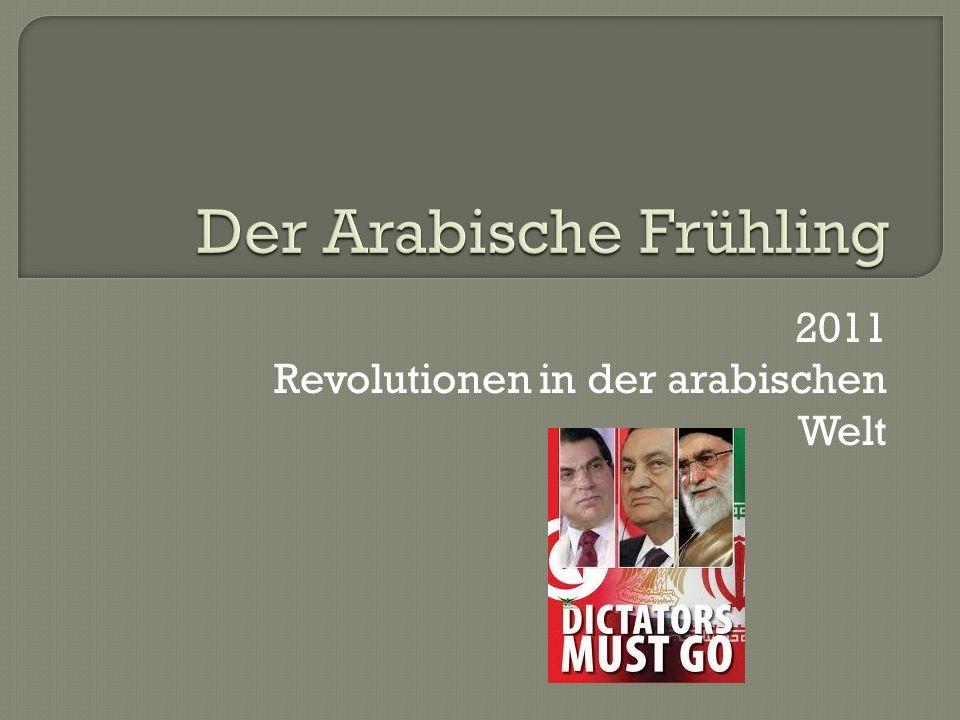 2011 Revolutionen in der arabischen Welt