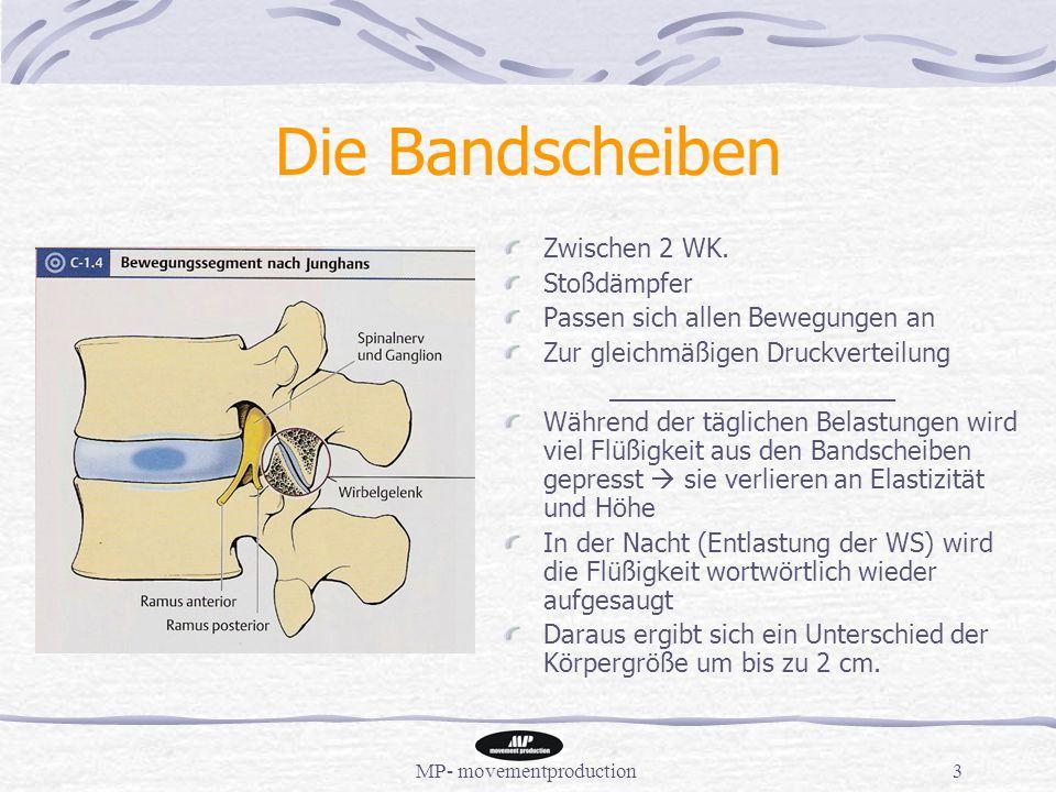 MP- movementproduction3 Die Bandscheiben Zwischen 2 WK.
