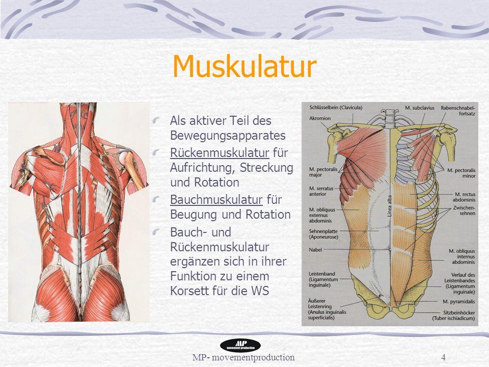 MP- movementproduction4 Muskulatur Als aktiver Teil des Bewegungsapparates Rückenmuskulatur für Aufrichtung, Streckung und Rotation Bauchmuskulatur für Beugung und Rotation Bauch- und Rückenmuskulatur ergänzen sich in ihrer Funktion zu einem Korsett für die WS