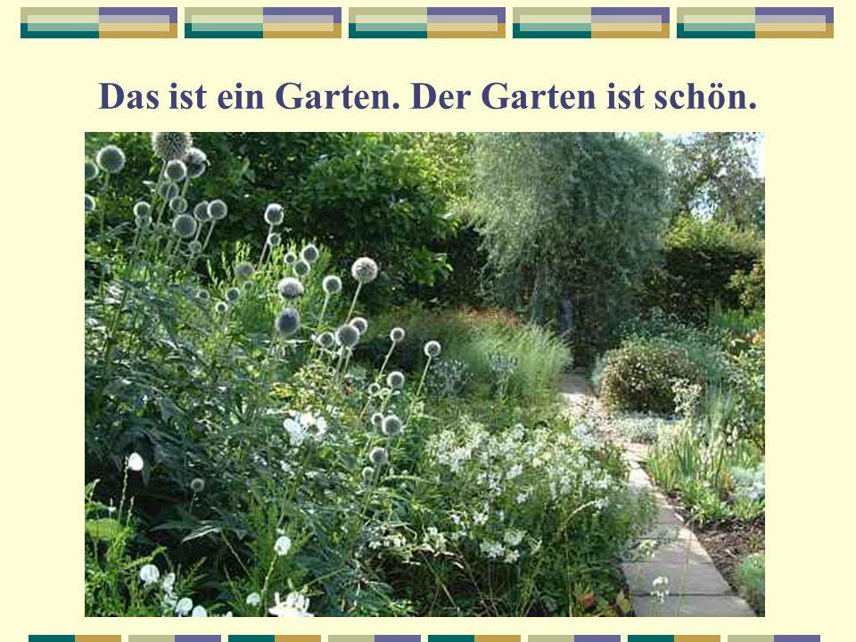 Das ist ein Garten. Der Garten ist schön.