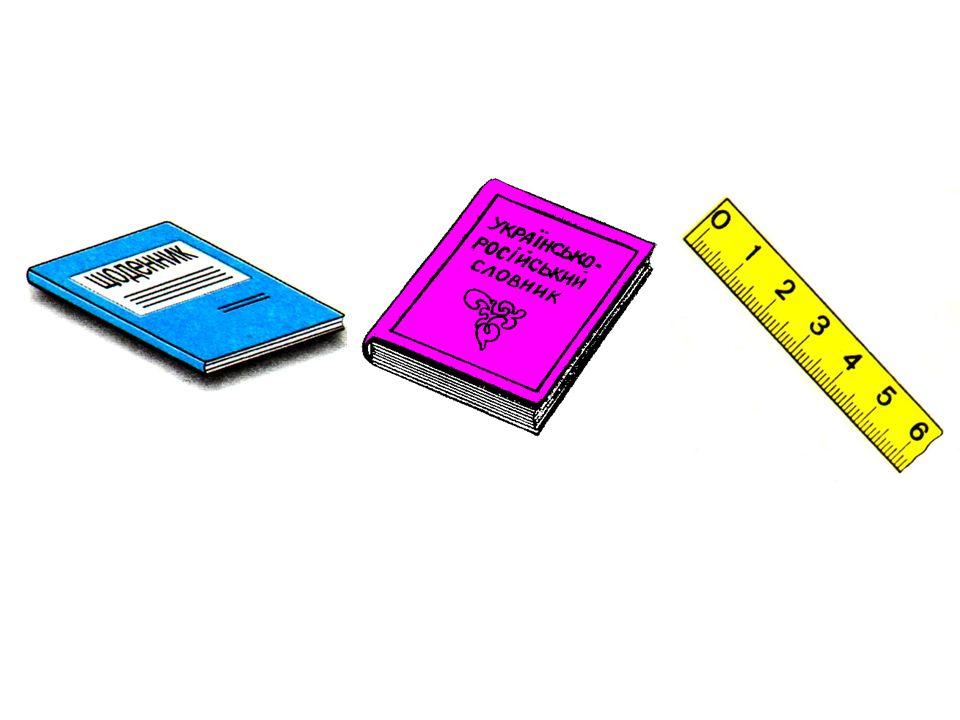 das Tagebuch das Wörterbuch das Lineal