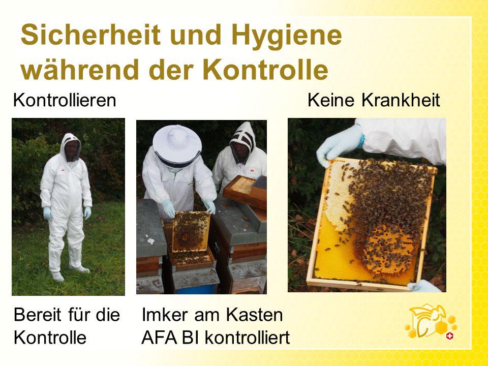 Sicherheit und Hygiene während der Kontrolle Kontrollieren Bereit für die Kontrolle Imker am Kasten AFA BI kontrolliert Keine Krankheit