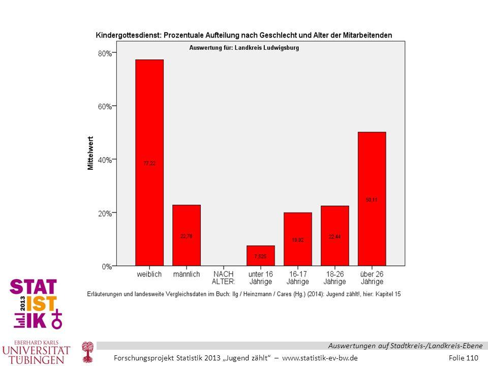 """Forschungsprojekt Statistik 2013 """"Jugend zählt – www.statistik-ev-bw.de Folie 110 Auswertungen auf Stadtkreis-/Landkreis-Ebene"""