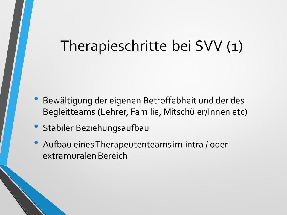 Therapieschritte bei SVV (1) Bewältigung der eigenen Betroffebheit und der des Begleitteams (Lehrer, Familie, Mitschüler/Innen etc) Stabiler Beziehung