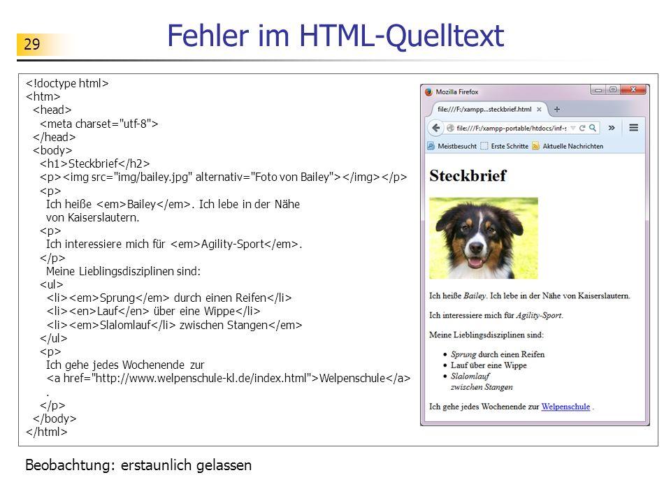 29 Fehler im HTML-Quelltext Steckbrief Ich heiße Bailey. Ich lebe in der Nähe von Kaiserslautern. Ich interessiere mich für Agility-Sport. Meine Liebl