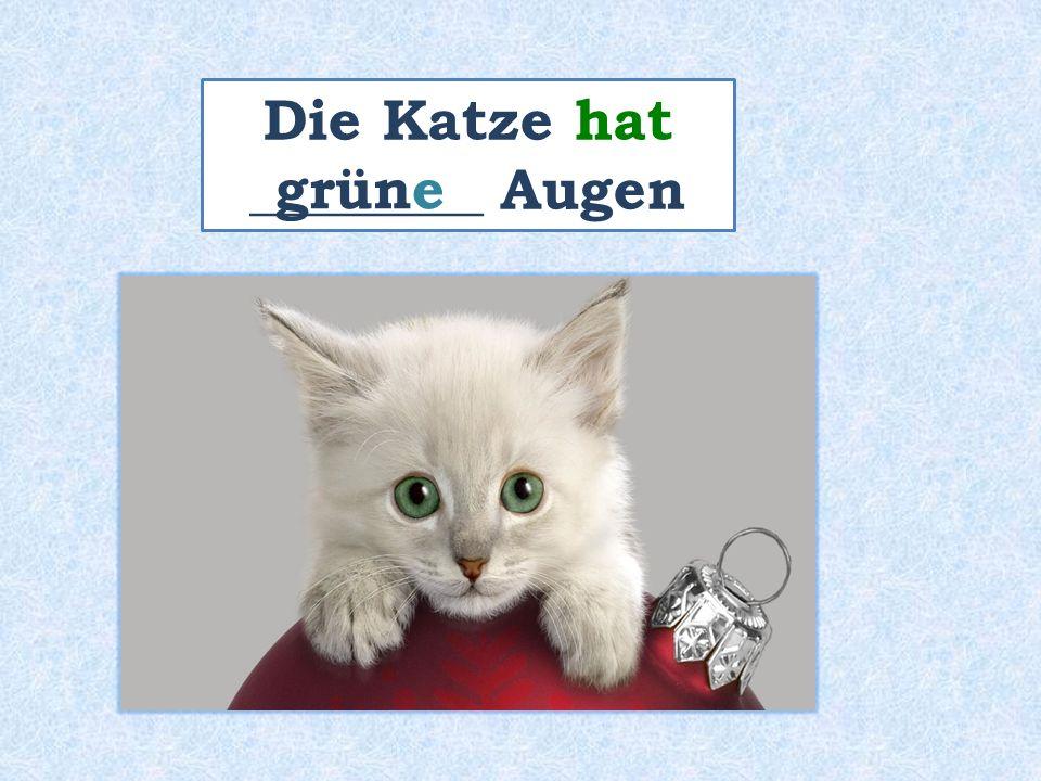 Die Katze hat ________ Augen grüne