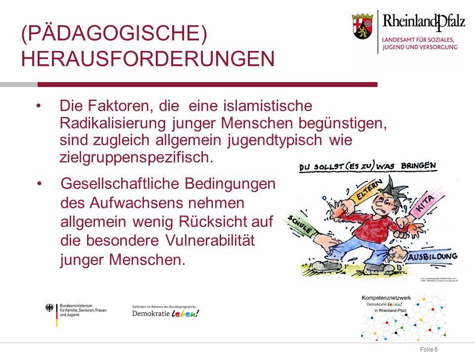 Folie 7 (PÄDAGOGISCHE) HERAUSFORDERUNGEN ggf.