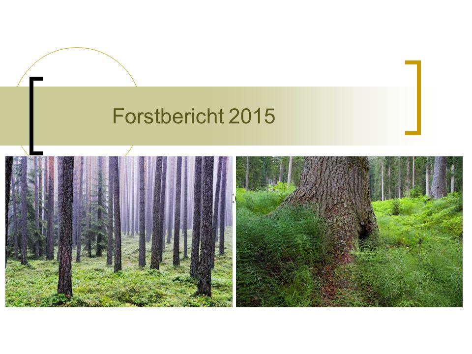 Dr. Paul Profanter, Abteilungsdirektor Forstbericht 2015