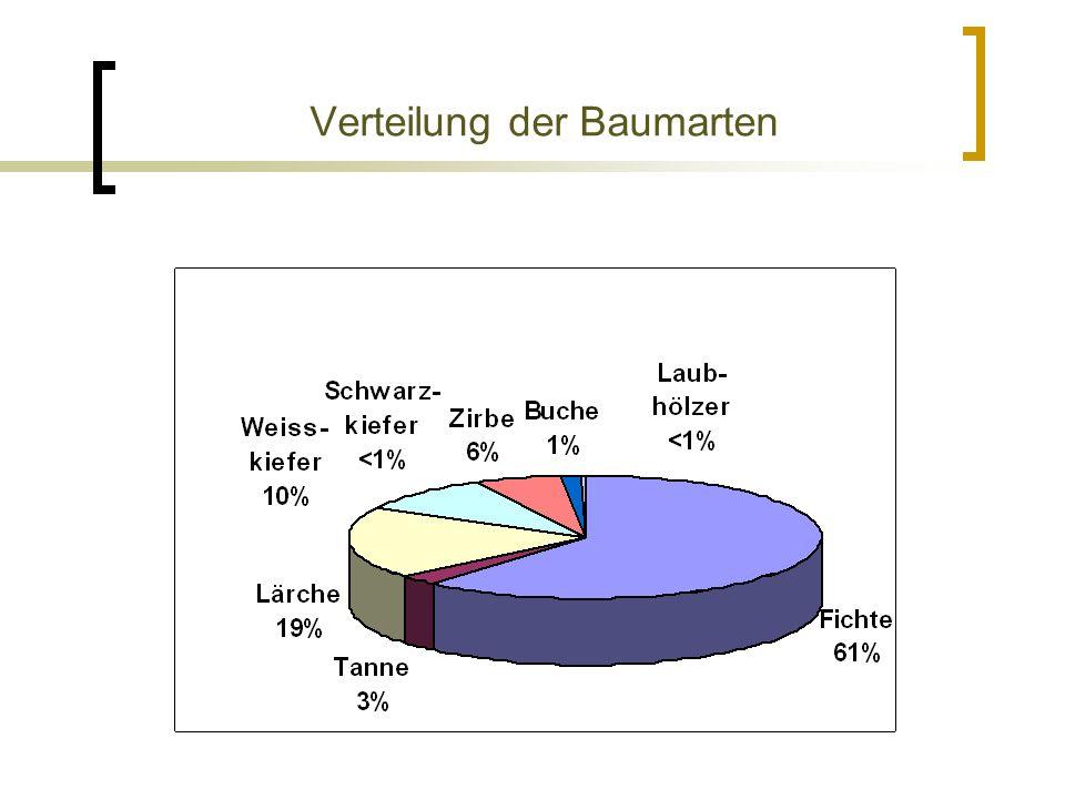Verteilung der Baumarten