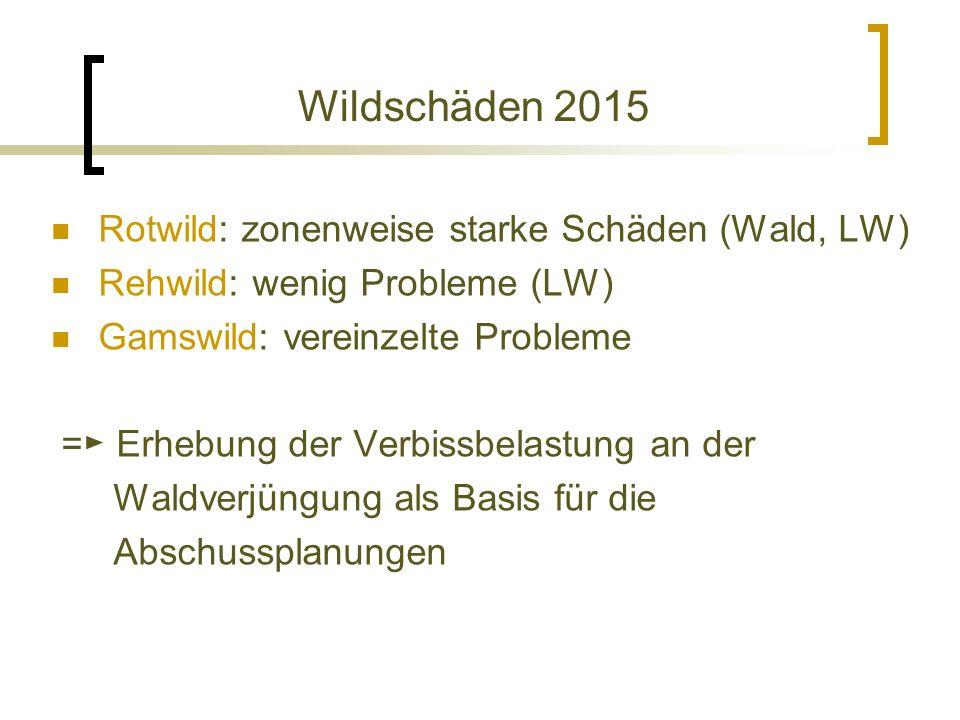 Wildschäden 2015 Rotwild: zonenweise starke Schäden (Wald, LW) Rehwild: wenig Probleme (LW) Gamswild: vereinzelte Probleme = ► Erhebung der Verbissbelastung an der Waldverjüngung als Basis für die Abschussplanungen