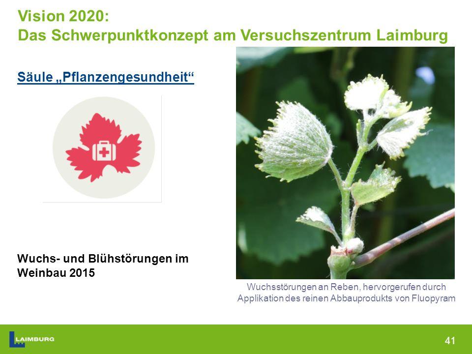 """41 Säule """"Pflanzengesundheit Wuchs- und Blühstörungen im Weinbau 2015 Wuchsstörungen an Reben, hervorgerufen durch Applikation des reinen Abbauprodukts von Fluopyram Vision 2020: Das Schwerpunktkonzept am Versuchszentrum Laimburg"""