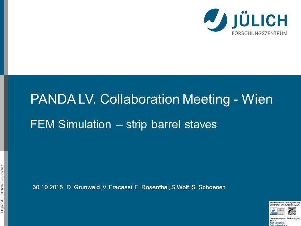 Mitglied der Helmholtz-Gemeinschaft PANDA LV. Collaboration Meeting - Wien FEM Simulation – strip barrel staves 30.10.2015 D. Grunwald, V. Fracassi, E