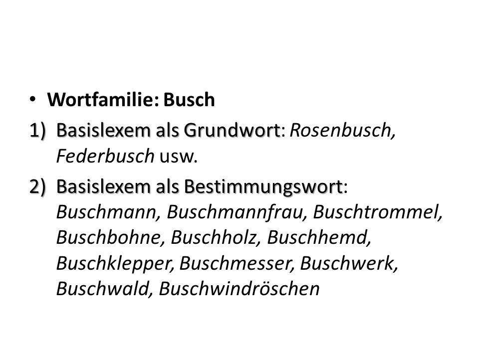 Wortfamilie: Busch 1)Basislexem als Grundwort 1)Basislexem als Grundwort: Rosenbusch, Federbusch usw.
