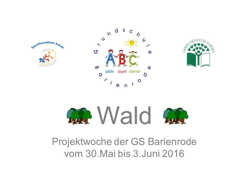 Wald Projektwoche der GS Barienrode vom 30.Mai bis 3.Juni 2016
