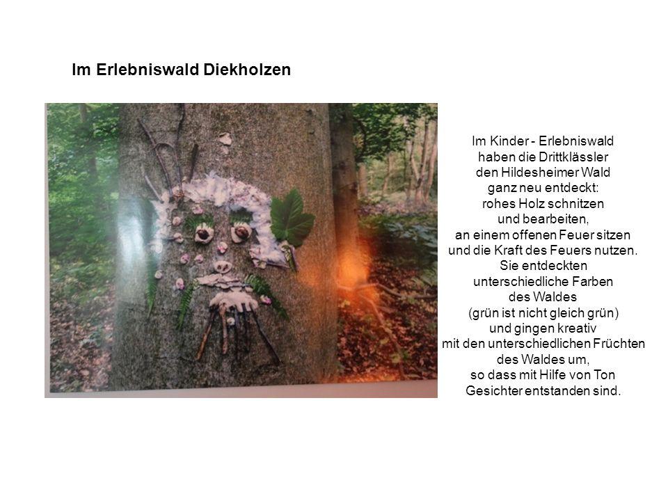 Im Erlebniswald Diekholzen Im Kinder - Erlebniswald haben die Drittklässler den Hildesheimer Wald ganz neu entdeckt: rohes Holz schnitzen und bearbeiten, an einem offenen Feuer sitzen und die Kraft des Feuers nutzen.