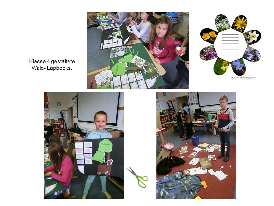 Klasse 4 gestaltete Wald- Lapbooks.