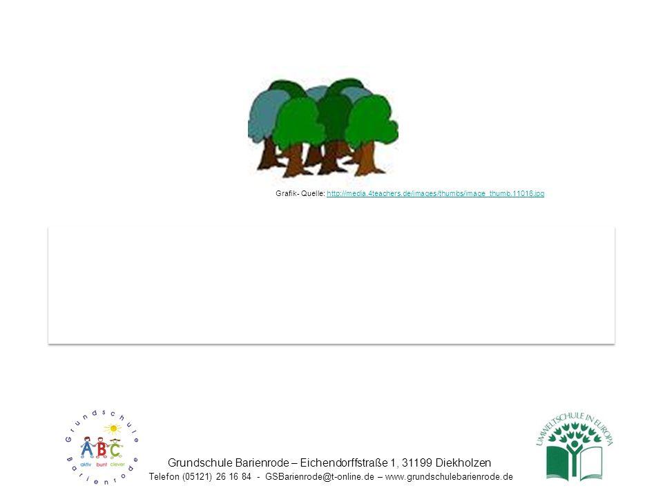 Unsere Wald-Projektwoche war ein toller Erfolg. Wir wollen sie alle vier Jahre wiederholen, damit unsere zukünftigen Grundschüler die gleichen Wald-Er