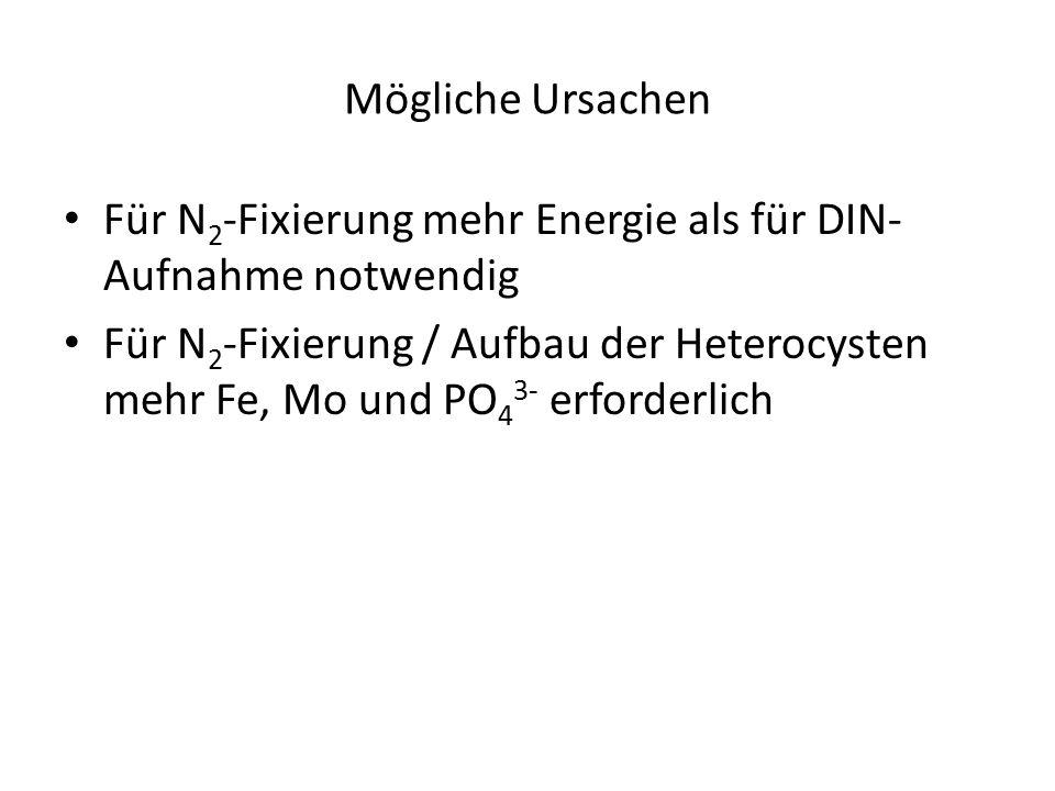 Mögliche Ursachen Für N 2 -Fixierung mehr Energie als für DIN- Aufnahme notwendig Für N 2 -Fixierung / Aufbau der Heterocysten mehr Fe, Mo und PO 4 3- erforderlich