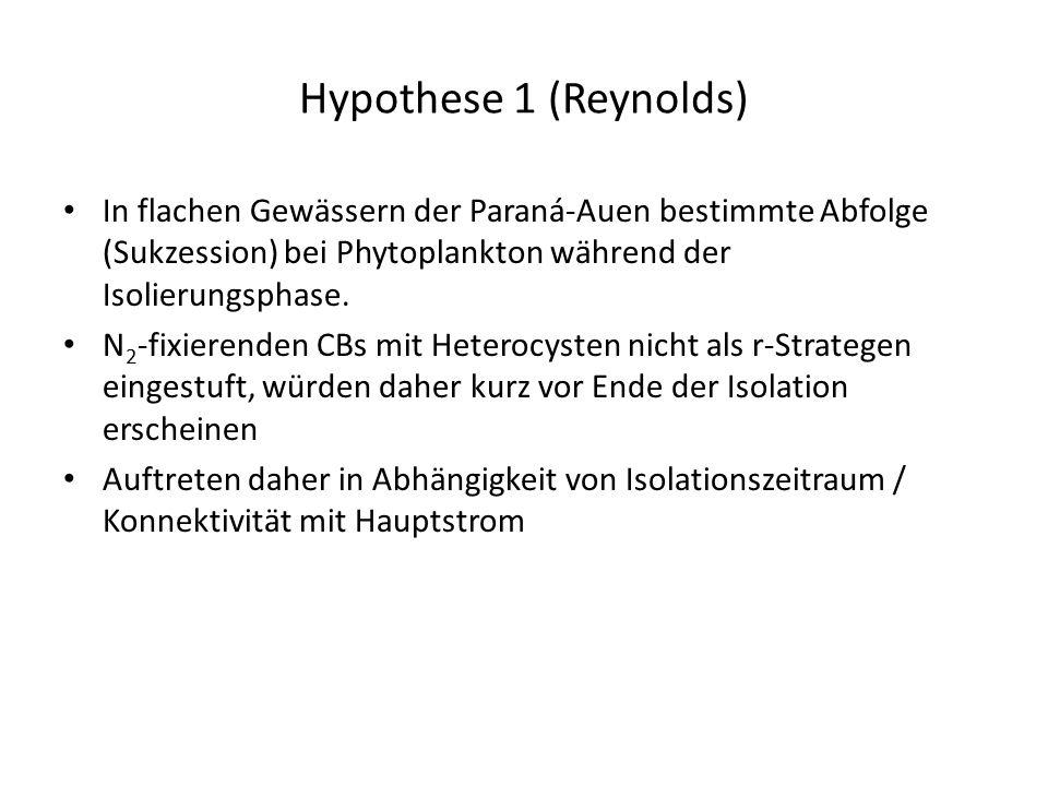 Hypothese 1 (Reynolds) In flachen Gewässern der Paraná-Auen bestimmte Abfolge (Sukzession) bei Phytoplankton während der Isolierungsphase.