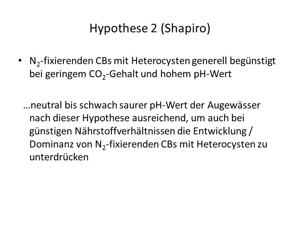 Hypothese 2 (Shapiro) N 2 -fixierenden CBs mit Heterocysten generell begünstigt bei geringem CO 2 -Gehalt und hohem pH-Wert …neutral bis schwach saurer pH-Wert der Augewässer nach dieser Hypothese ausreichend, um auch bei günstigen Nährstoffverhältnissen die Entwicklung / Dominanz von N 2 -fixierenden CBs mit Heterocysten zu unterdrücken